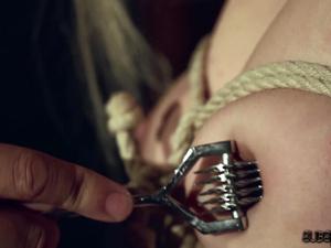 Submissive pain sluts get punished