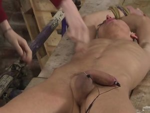 Stretched And Stroked - E-Stim! - Reece Bentley And Ashton Bradley